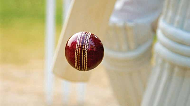 Joyville Gurgaon - Cricket Pitch